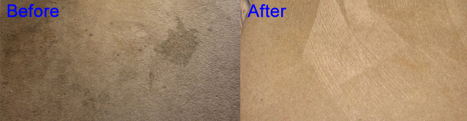 Carpet Cleaning by Aquakor in Santa Clarita