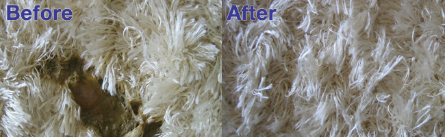 Success Story - White Carpet Cleaning by Aquakor in Santa Clarita